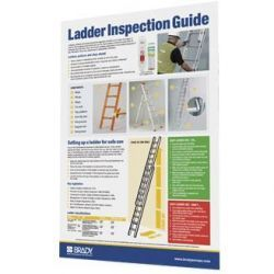 Encapsulated Ladder Inspection Guide Poster